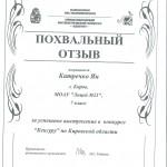 Похвальный отзыв с конкурса Кенгуру 2012 г